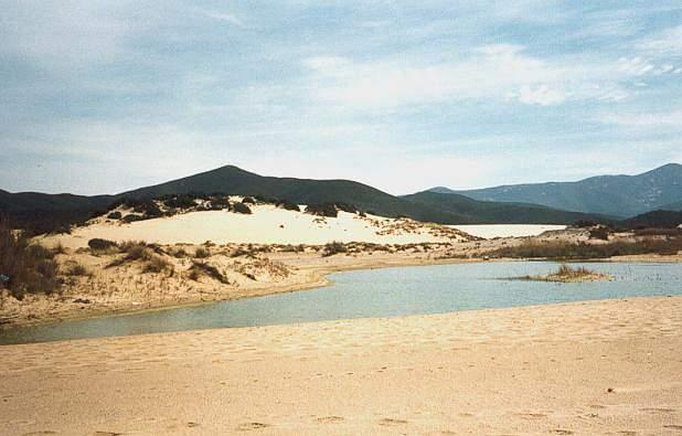 Pin di sabbia spiaggia mare onde estate cielo natura foto - Piscina quinto di treviso ...